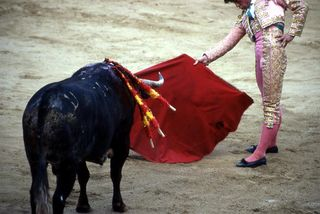 Bullfight (c) ADDA