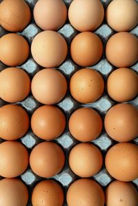 Eggs (c) WSPA-Heather Locke